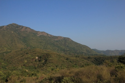 吊燈籠是欣賞印洲塘的理想地方