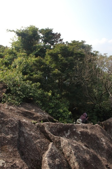 第二段石林的入口