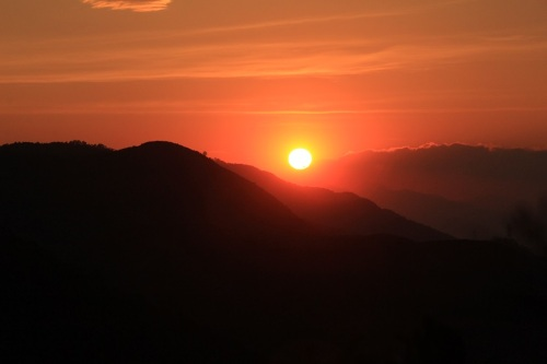 黃牛看夕陽
