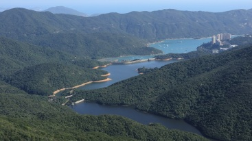 從紫羅蘭山俯瞰大潭水塘