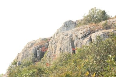 廟仔墩南崖的風景